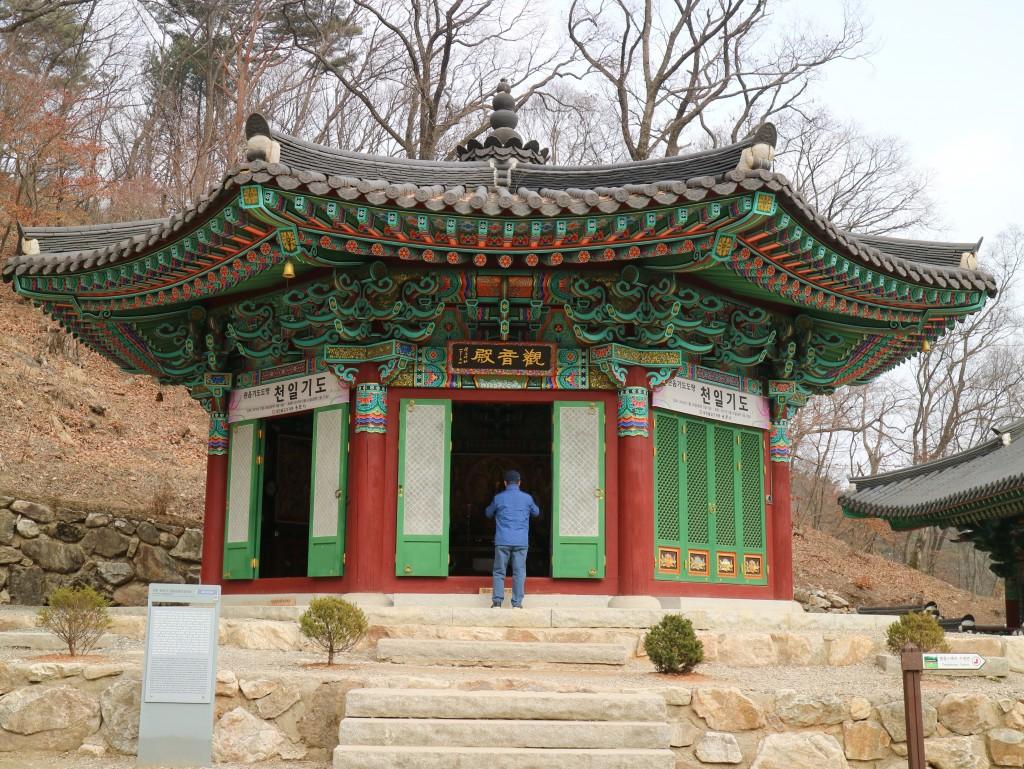 양평딸기, 안산다문화 176
