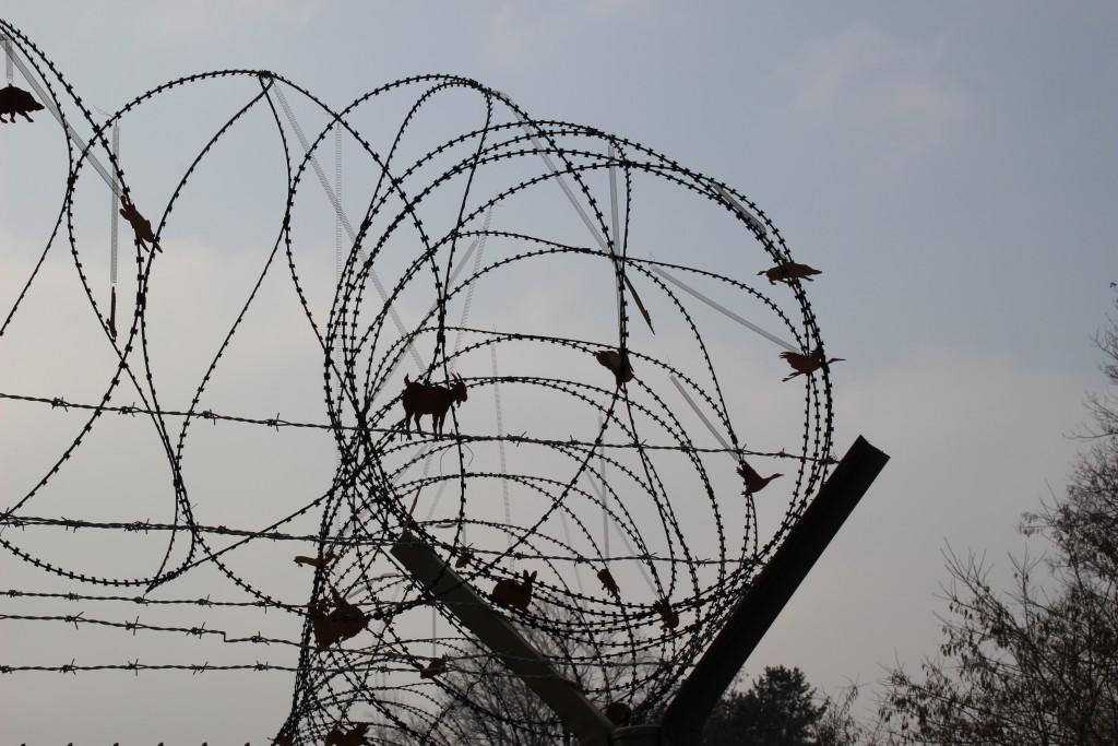 캠프그리브스,독수리,도라산공원 125