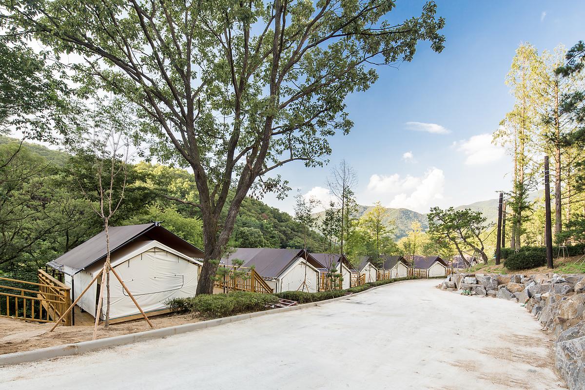 동화힐링캠프4
