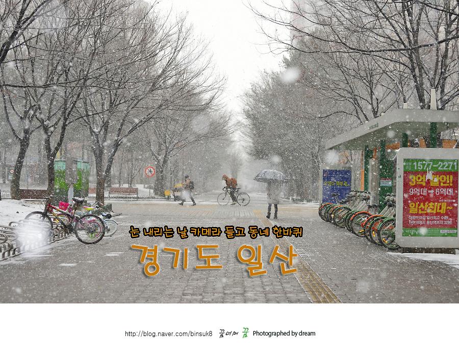 2016.2.16 눈내리는날 카메라들고 동네한바퀴 경기도 일산