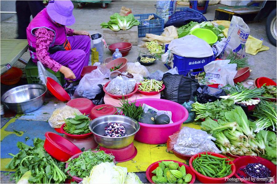 다양한 채소들