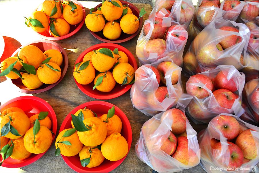 다양한 과일들