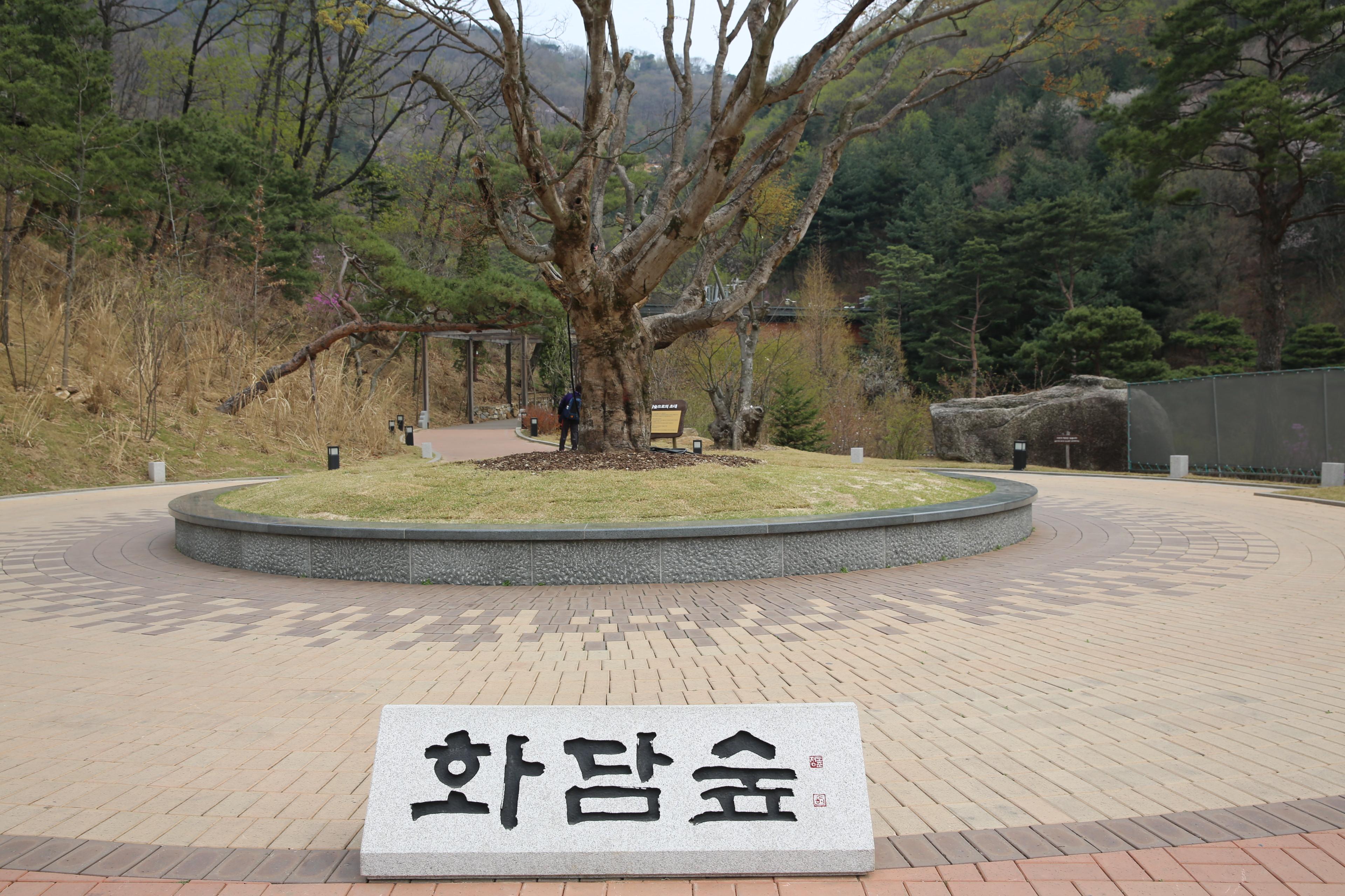 경기도 광주여행 자연숲 곤지암화담숲