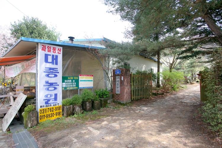 대종농원배밭021