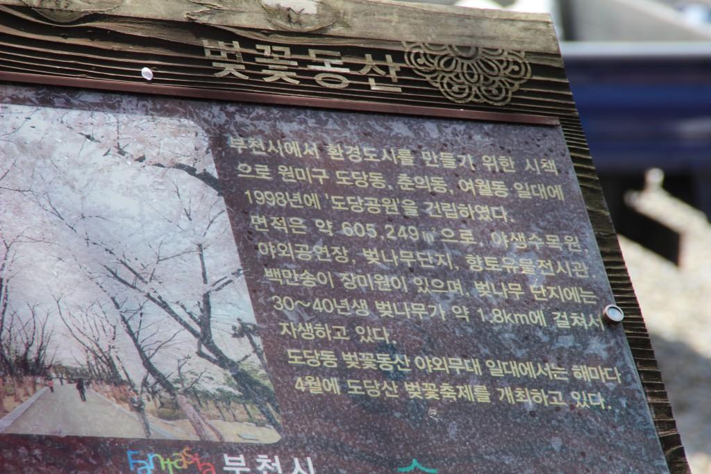 문원미산,도당산,무릉도원,동대 027