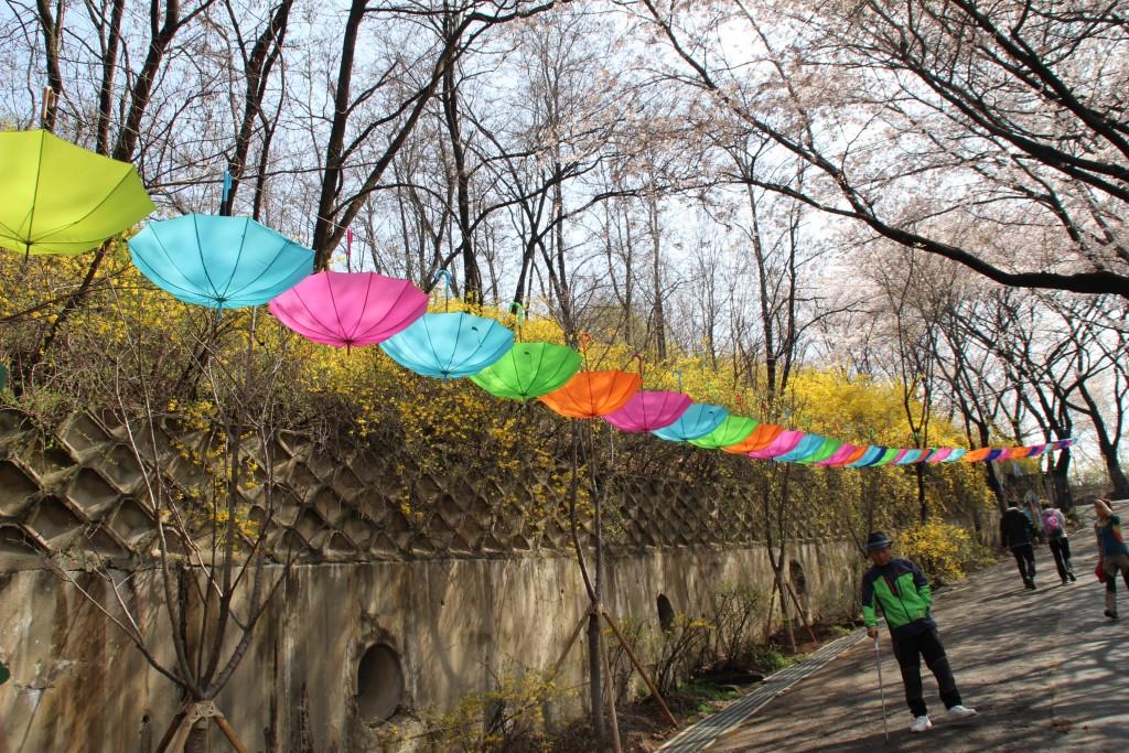 문원미산,도당산,무릉도원,동대 028