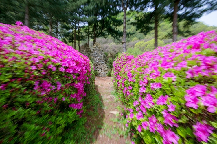 율봄식물원019
