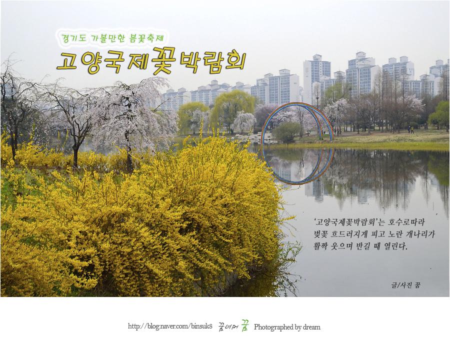 2016.3.16 경기도가볼만한 봄꽃축제 고양국제꽃박람회