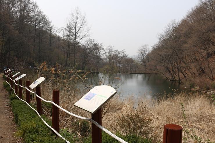 등산로 옆 연못
