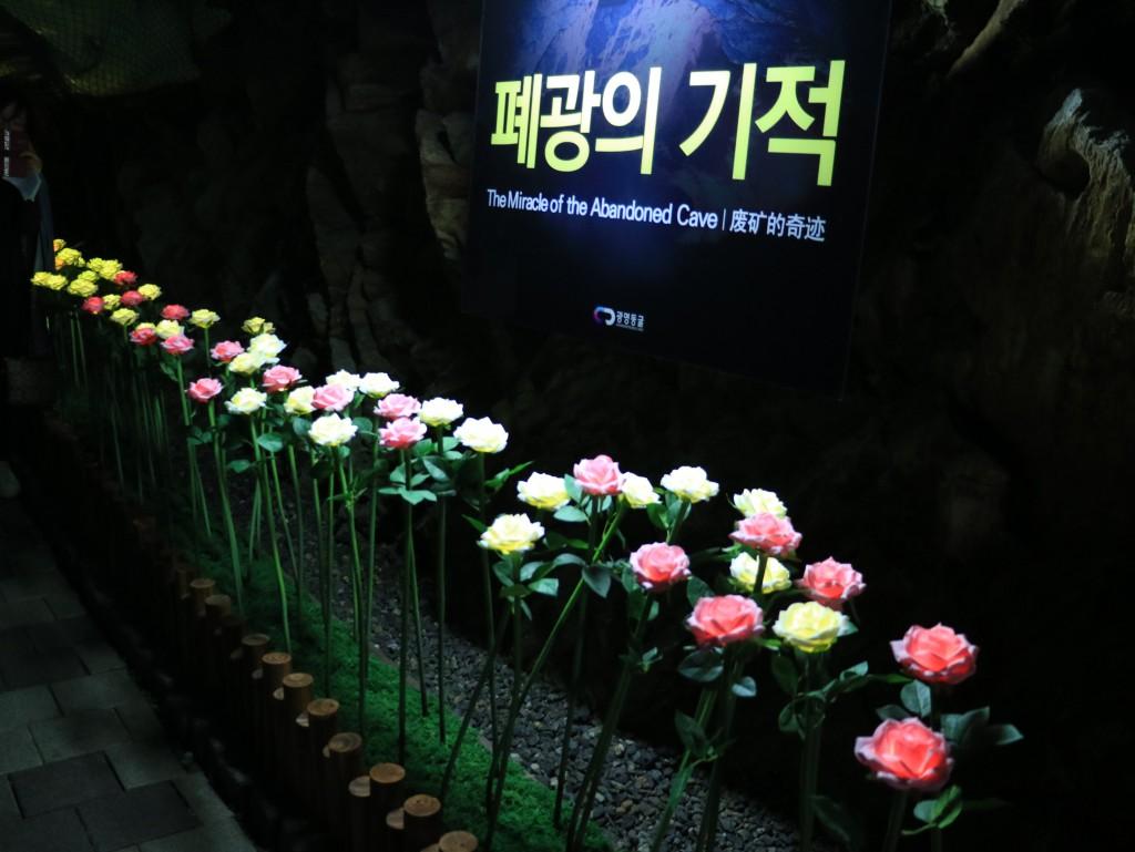 광명동굴,충현박물관, 테크노마트카메라 343