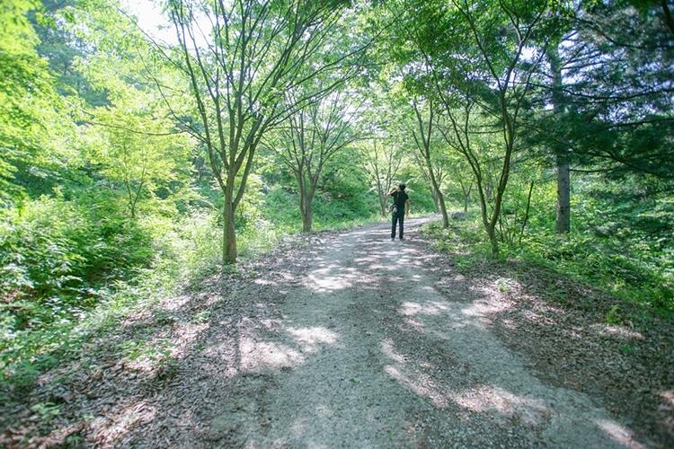 서후리숲013