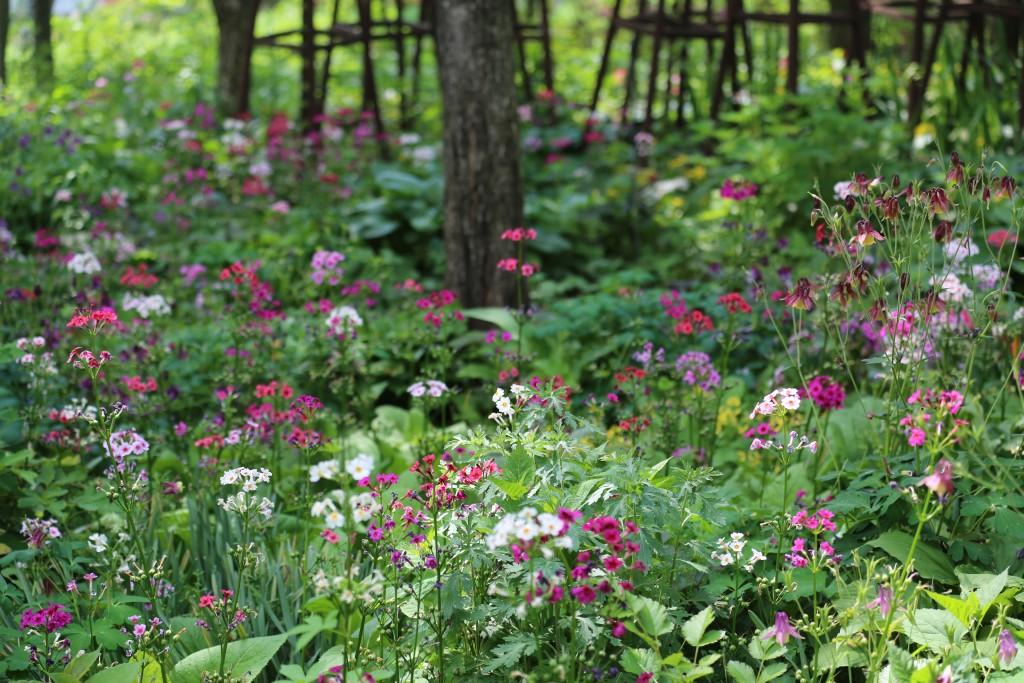 식물원 084