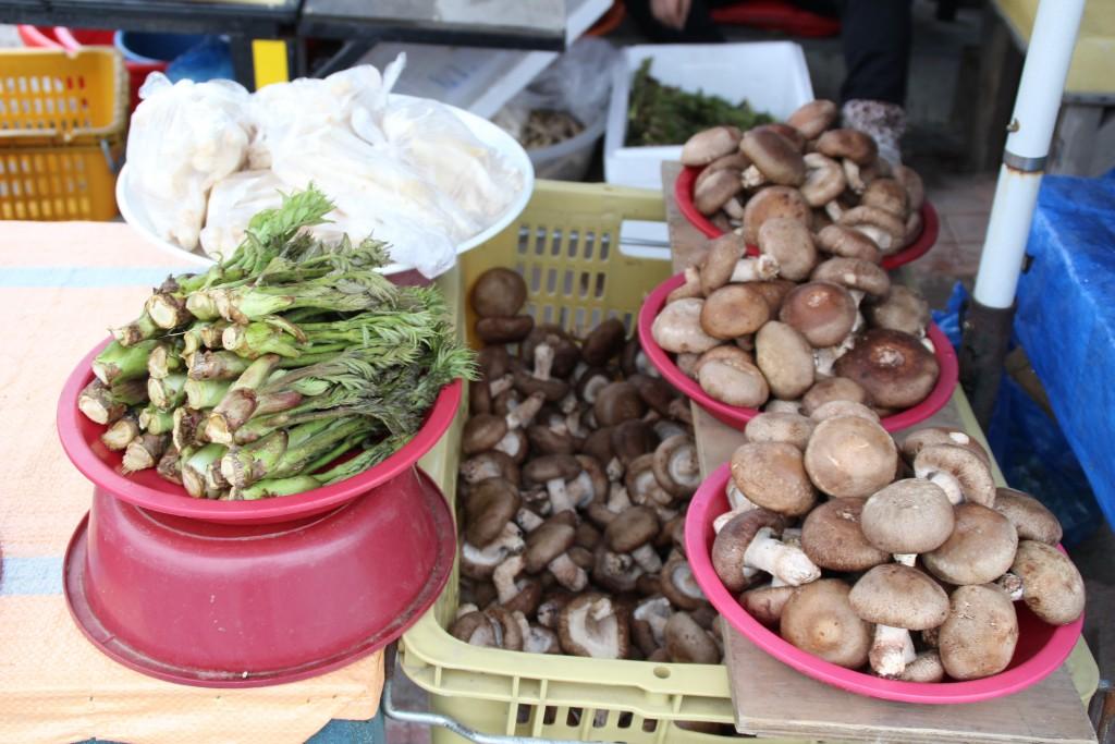 양평산나물축제,들꽃수목원,농업박물관,양평군립미술관 012