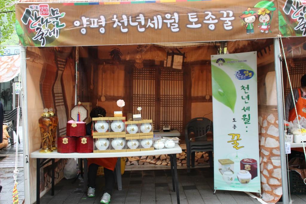 양평산나물축제,들꽃수목원,농업박물관,양평군립미술관 033