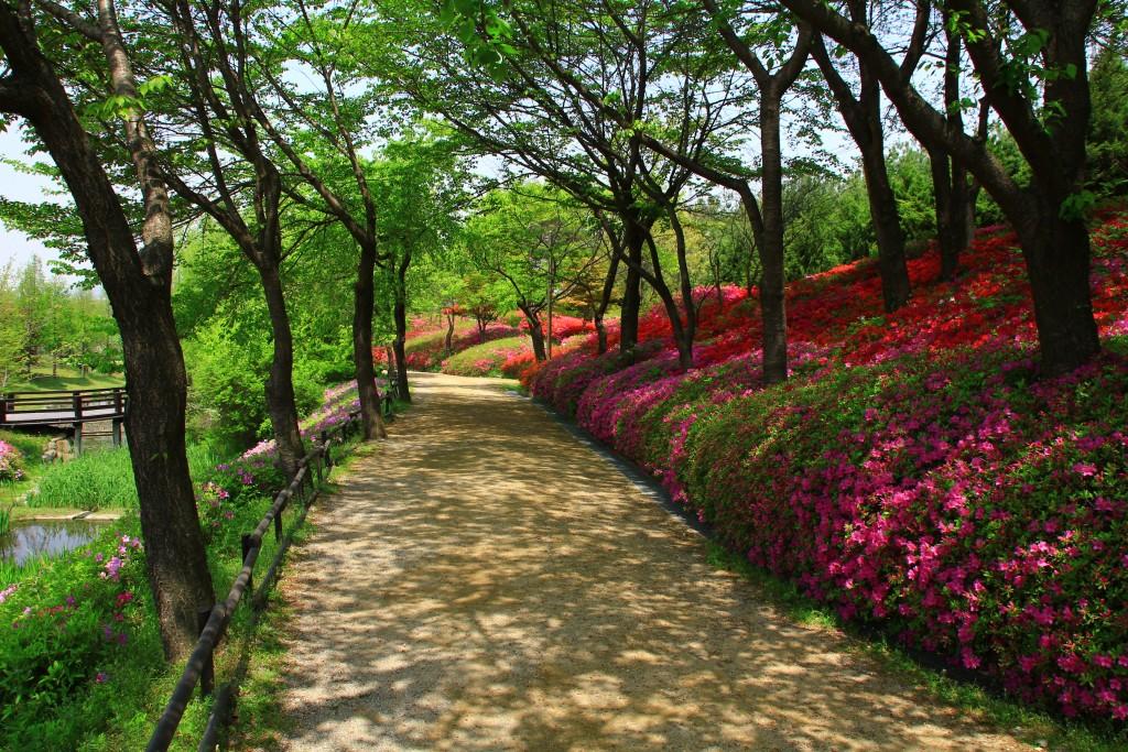 의왕왕송저수지, 군포철쭉동산,시골밥상 018
