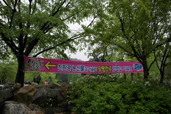 제7회 양평 용문산 산나물축제