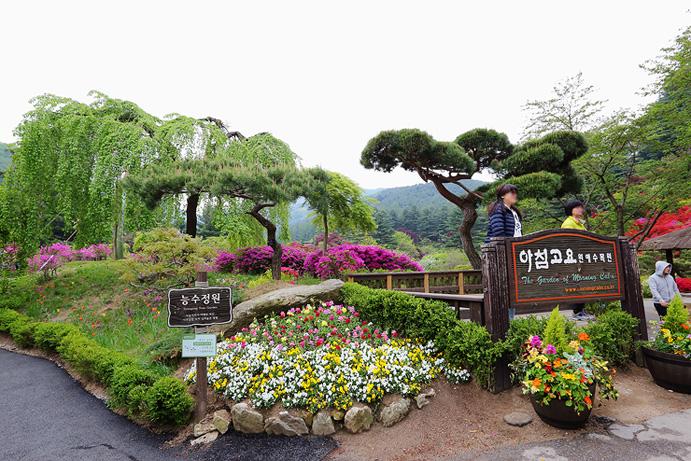 경기도 가평 가볼만한곳-아침고요수목원 봄꽃축제