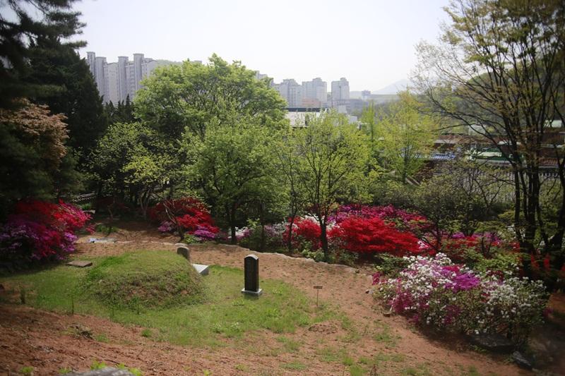 kwangmyung221