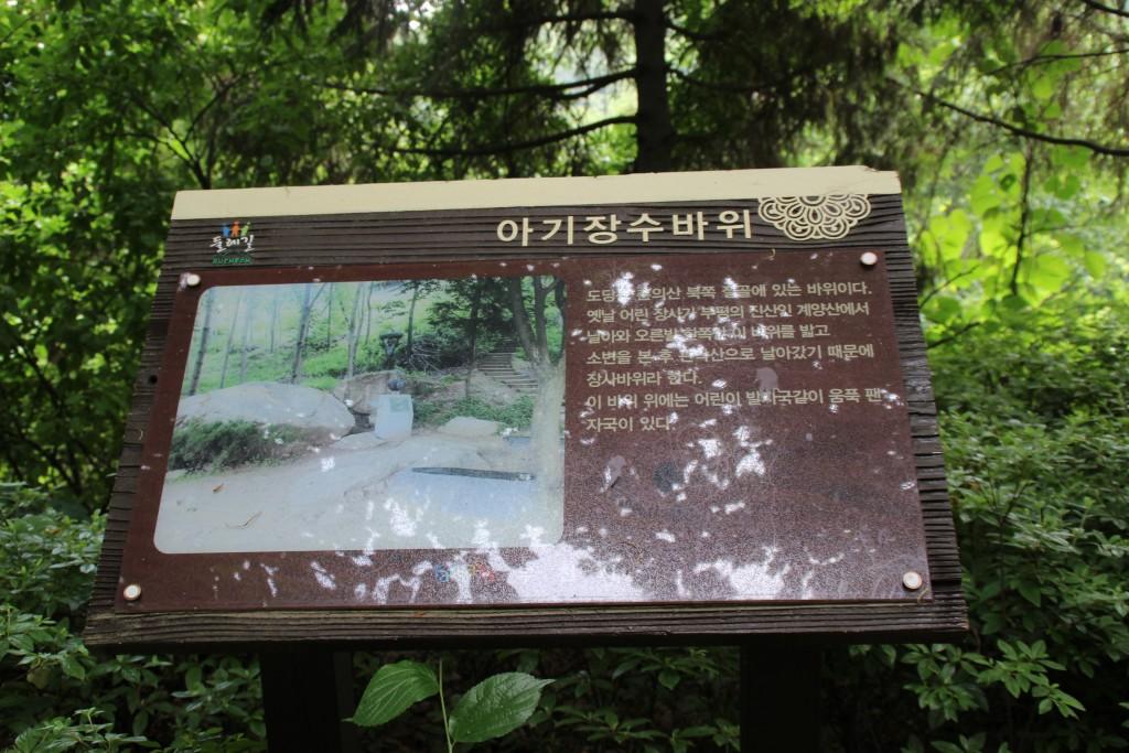 부천100송이장미공원,무릉도원수목원 011
