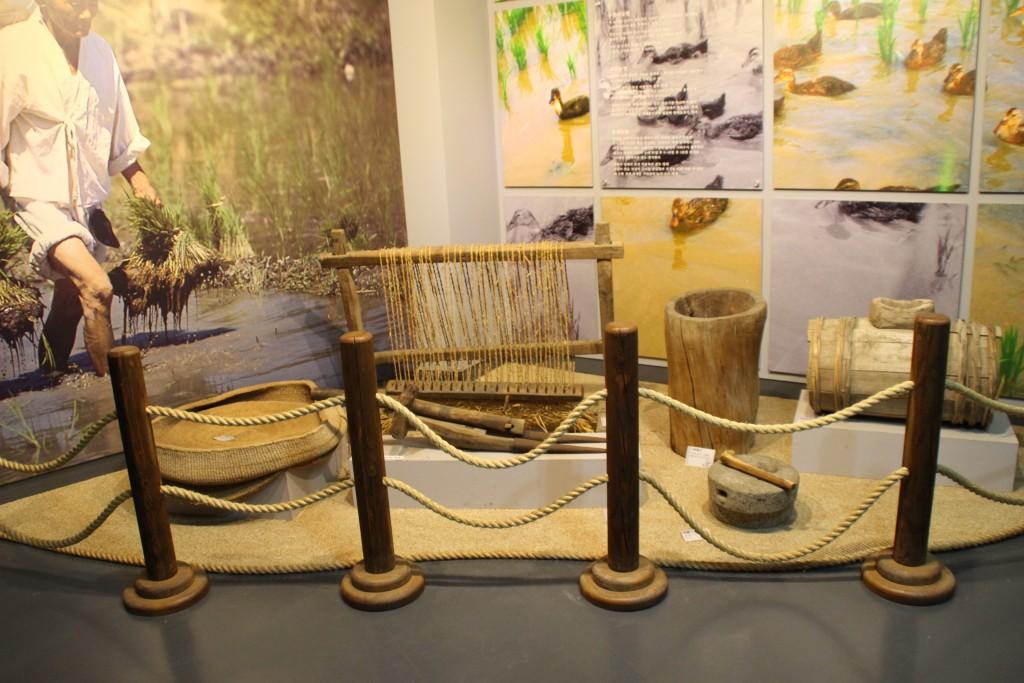 양평산나물축제,들꽃수목원,농업박물관,양평군립미술관 133
