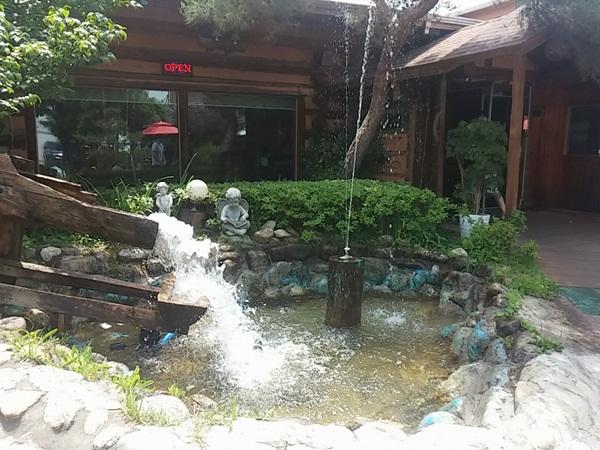 정원에 있는 작은 연못