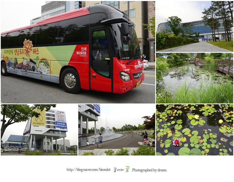 버스와 성남시청의 사진들