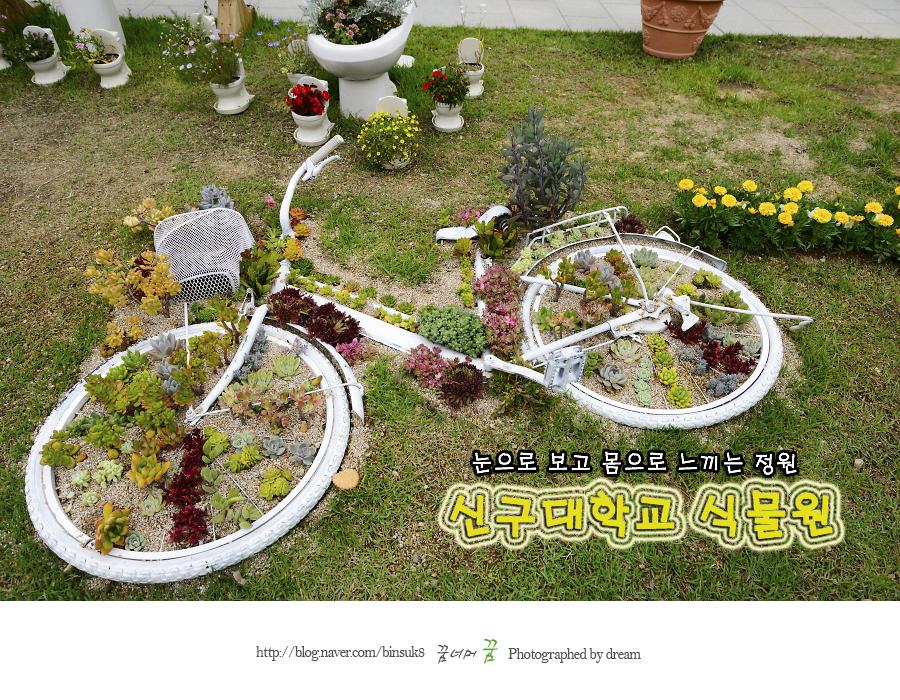 자전거 모양으로 자란 식물들