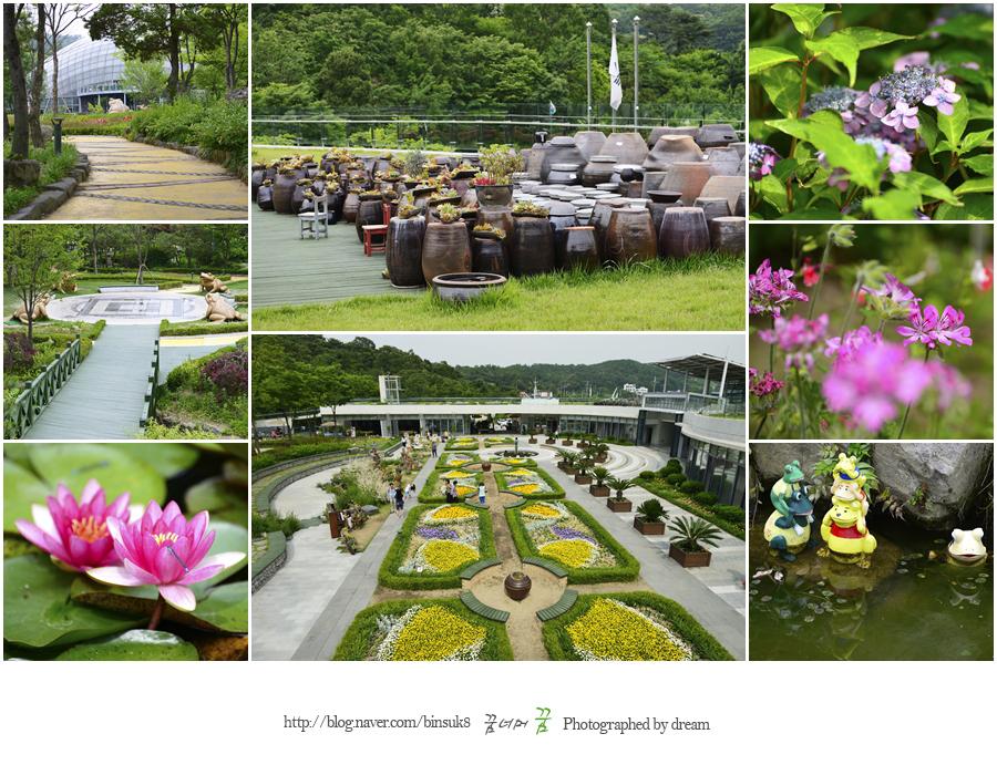 신구대 식물원 전경과 식물들