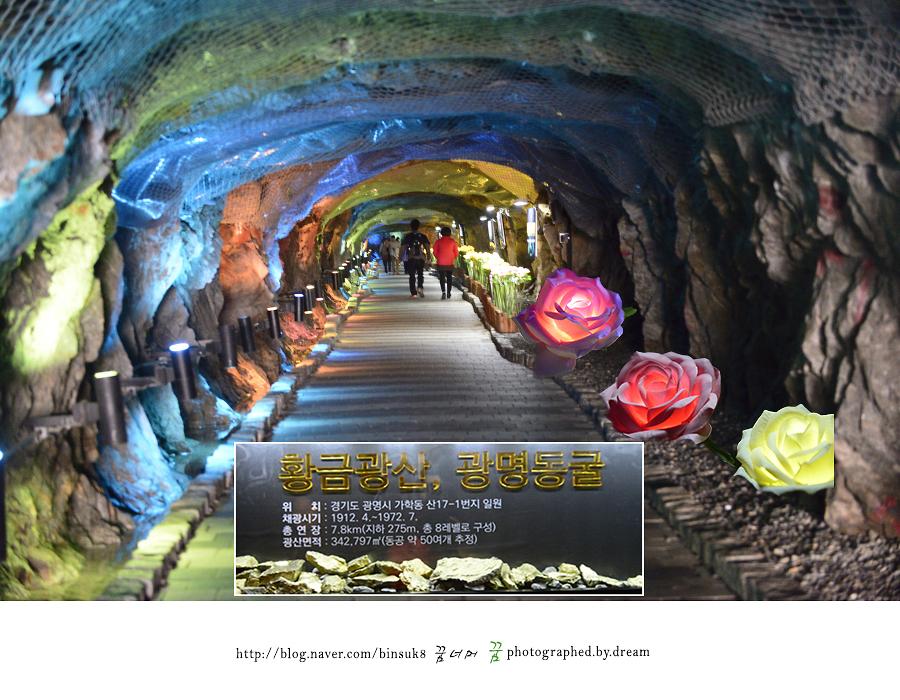 동굴 내부 사진
