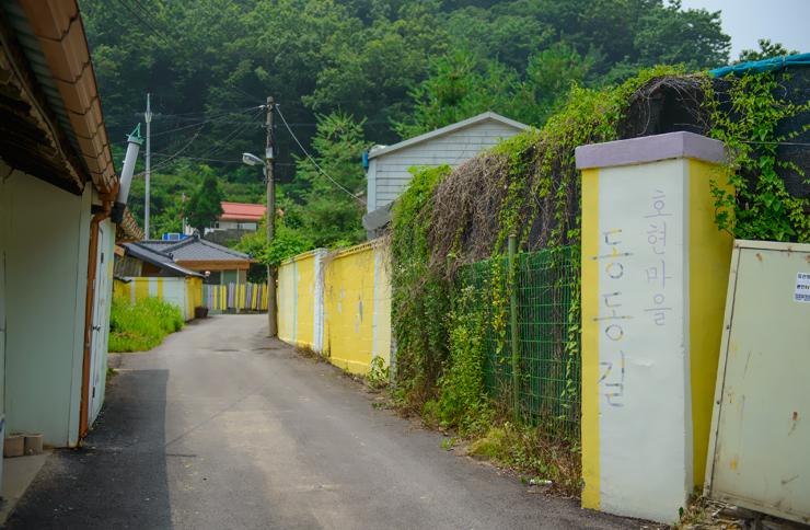 노란색의 벽들