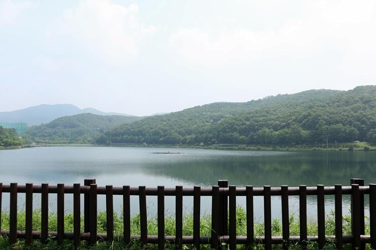 율동공원에서 바라본 강가