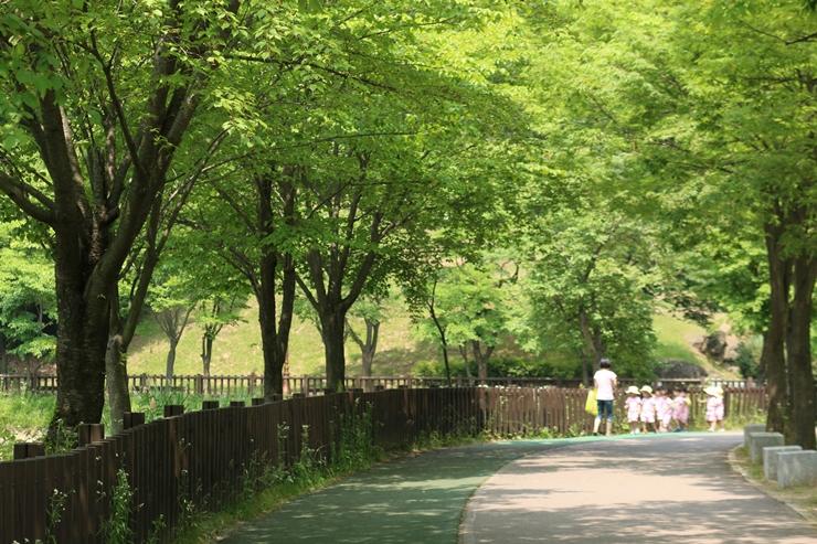 나무 그늘이 드리운 산책로
