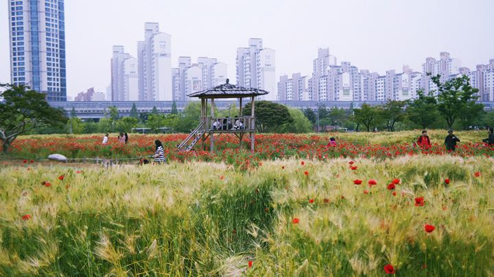 상동호수공원
