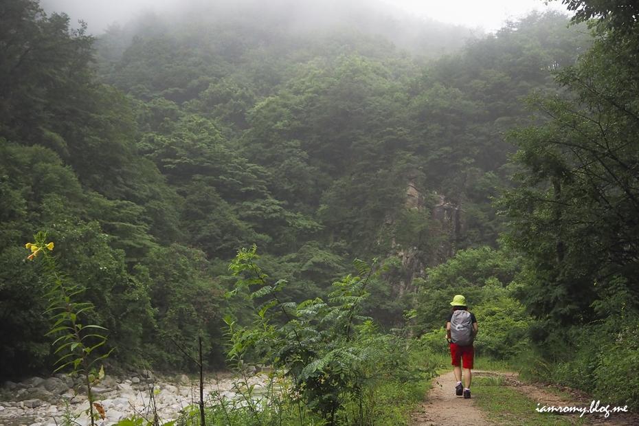 산행길을 걷는 등산객