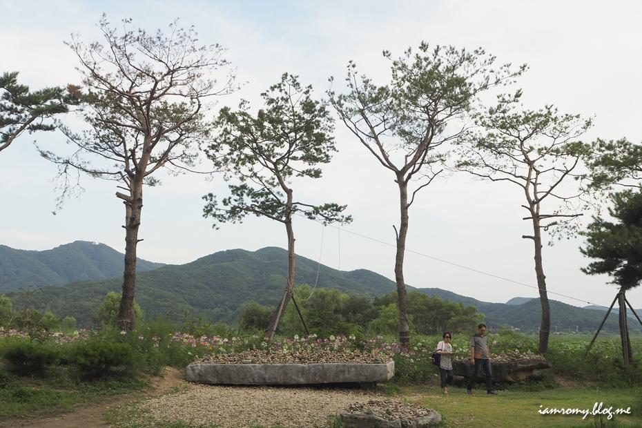 들판에 자란 나무와 사람들