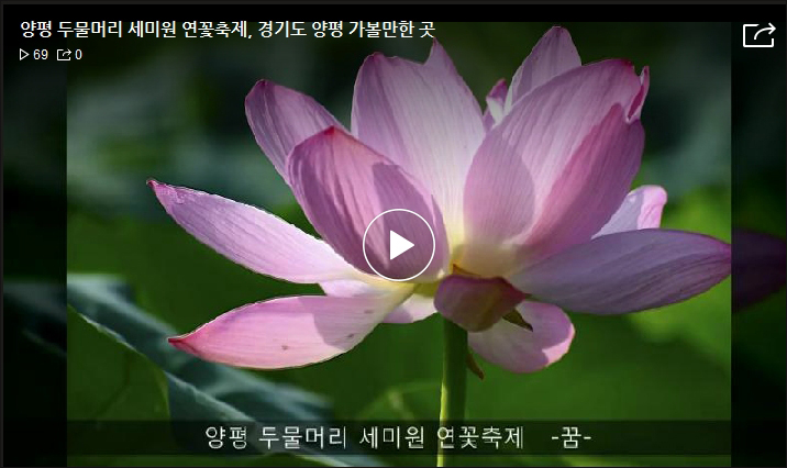 홍보 동영상