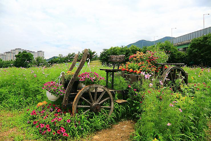 꽃으로 장식 된 마차 조형물