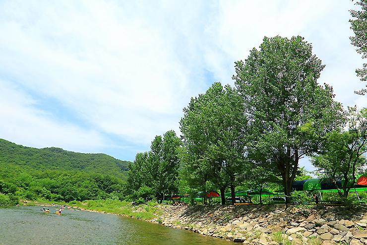 강에서 바라본 캠핑장