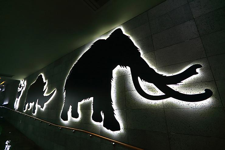 어둠속에 밝게 빗나는 동물 모형
