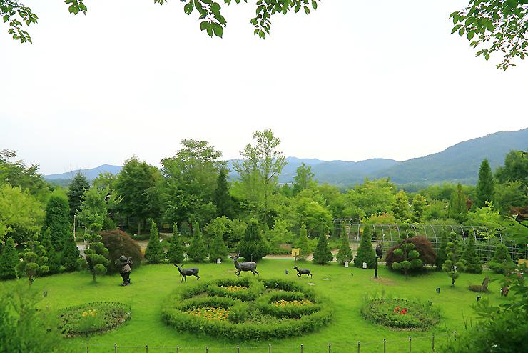들꽃수목원 전경