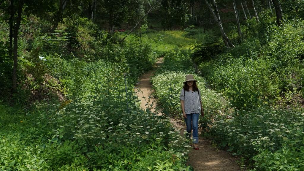 숲길을 걷고 있는 사람