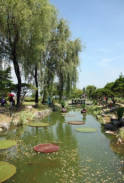 버드나무가 늘어진 연못