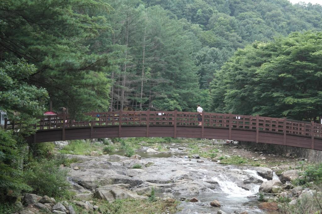 계곡 사이에 놓여진 다리