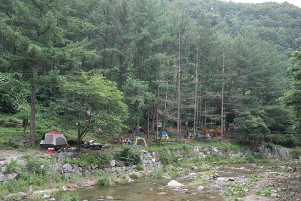 계곡에서 캠핑을 하는 사람들