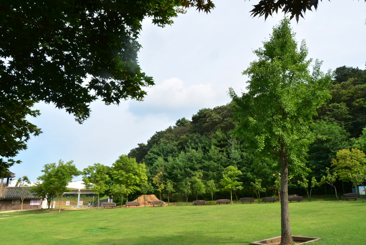 태산패밀리파크 잔디광장