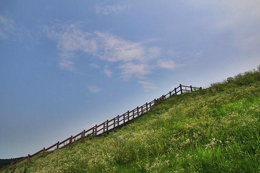 탁 트인 풍경
