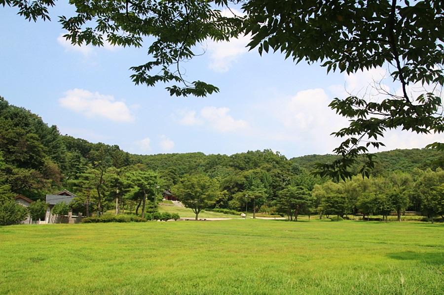 율곡유적지에서 보이는 넓은 잔디밭
