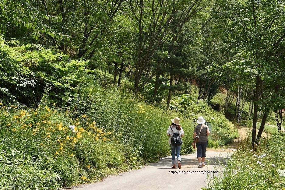 산책을 하는 관람객들