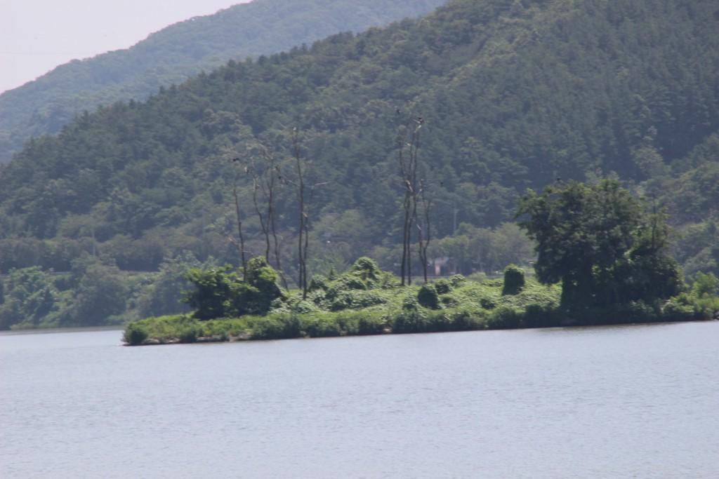 강 한 가운데 보이는 섬