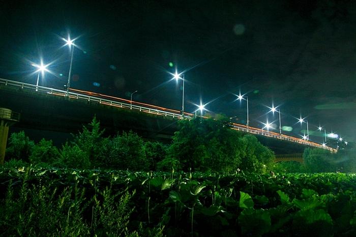 야간 조명에 반짝이는 양수대교